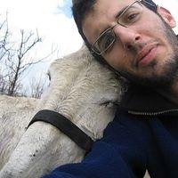 Avner Kiro's Photo