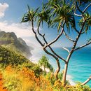 Kalalau Trail (Na pali Coast Line 2 Days Hike )'s picture