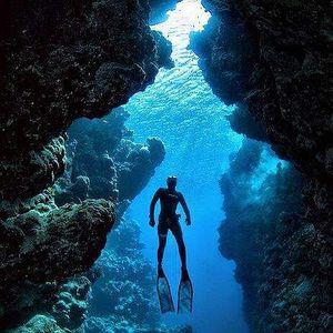 OceanMan Hadi's Photo