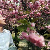 Bingxin Jiao's Photo