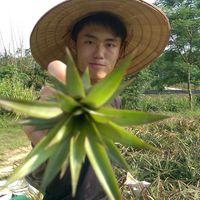 Lin Zhi Jun       .'s Photo