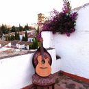 Intimate Folk Concert on Roof Terrace!'s picture