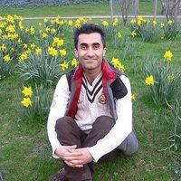 Mehdi Osooli's Photo