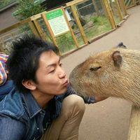 Taishi Iwamoto's Photo