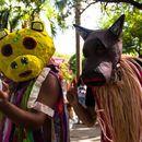 Melodia de Budega - La Ursa do Hipódromo's picture