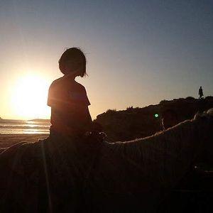 Pricilla Chooy's Photo