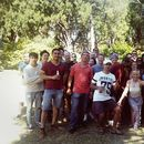 Christmas Lunch at St Kilda Botanical Gardens's picture