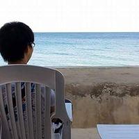Kento Tomisawa's Photo