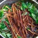 AYAHUASCA SESSION's picture