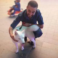 Fouad GM's Photo