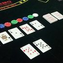 Poker Holdem NL Cashgame/SNG, the 2nd Edition's picture