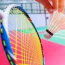 Indoor Badminton - Mixed Doubles's picture