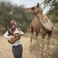 Jeff Hann's Photo