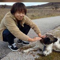 Photos de Shitetsu Yang