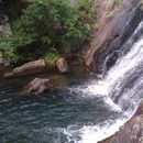 Ng Tung Chai Waterfall hiking and swimming!'s picture